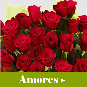 flores para namorados Shopping West Plaza