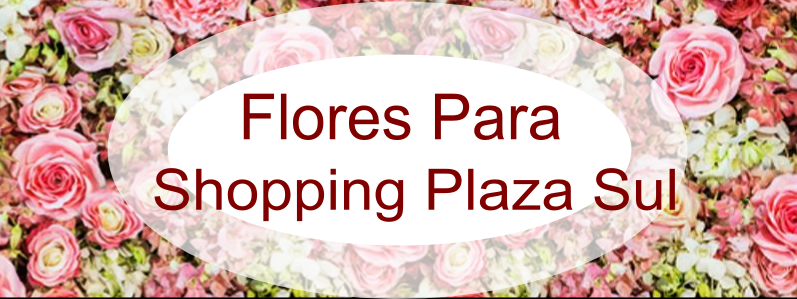 floricultura shopping plaza sul